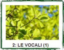 LE VOCALI (1)